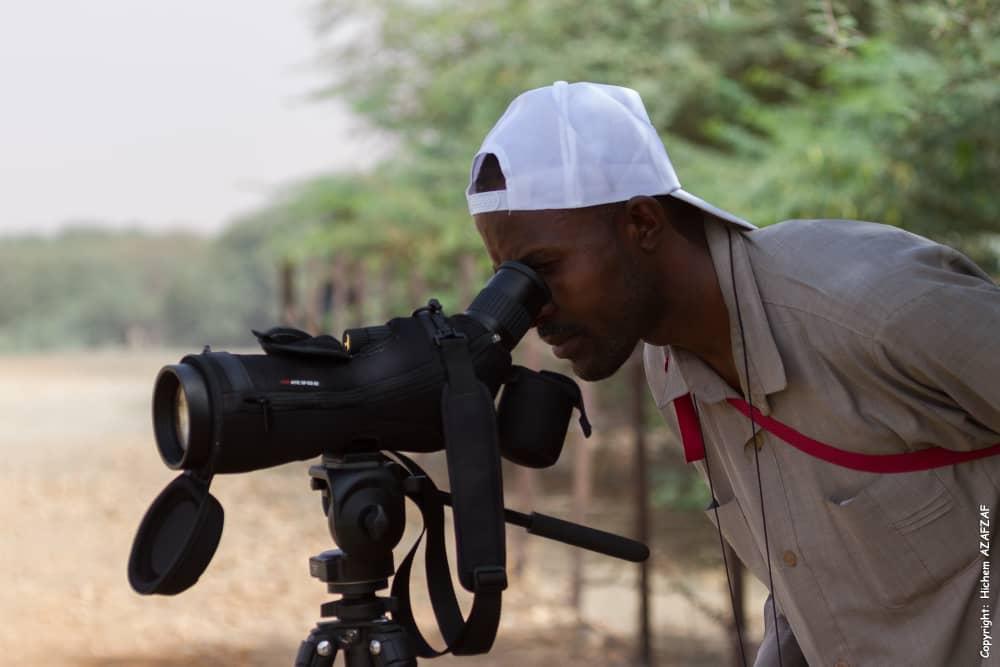 Sudanese Wildlife Journal